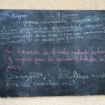 Jeudi 21 janvier 2021 – Bonne fête aux Agnès ! Un très bel anniversaire à Mayssam (CP)